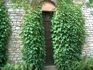 door-101193_1280 (1)